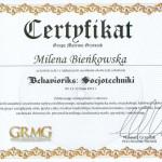dyplom socjotechniki