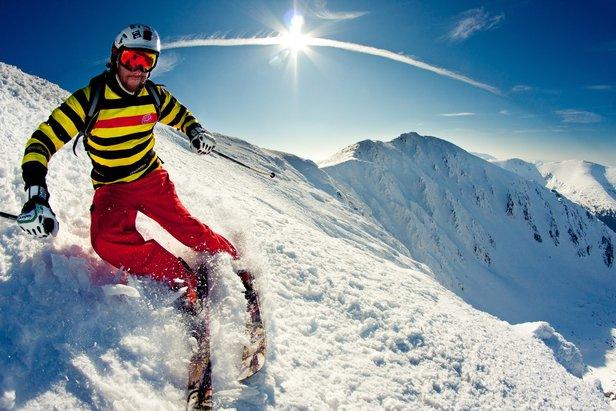 kolor narciarz